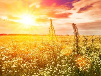 depositphotos_28645733-stock-photo-late-sunset-on-the-summer