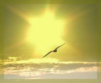 paz de Deus